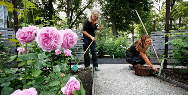 trädgårdsutbildning för vuxna
